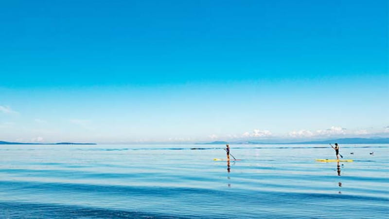 【Osaka】Special feature: Activities that you can enjoy in summer despite Covid-19! Have a blast on either the sea or rivers of Osaka with the SUP (Stand Up Paddle) Experience or SUP Yoga Experience!