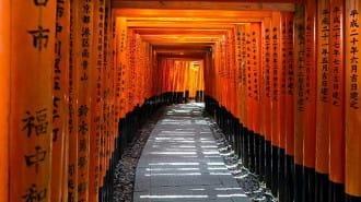 京都でおすすめの寺7選!京都観光で押さえたい寺をご紹介します