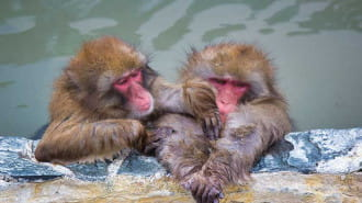 【大阪】大阪府内の素敵な温泉をご紹介!日頃頑張ってるあなたへ!