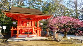 【京都】河原町・烏丸エリアの魅力的な神社7選!京都らしい観光を堪能!