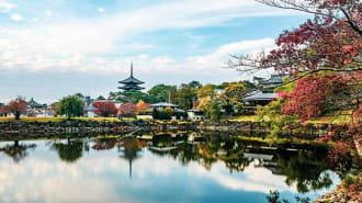 """奈良の世界遺産""""古都奈良の文化財""""8つを全部ご紹介!"""