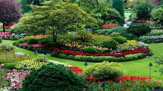 【東京】美しい庭園や自然いっぱいの公園で癒されよう!おすすめの園厳7選!