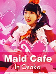 Exclusive! Maid Cafe Experience