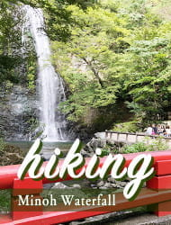 Minoh Nature Hiking Tour★ Waterfall and More!