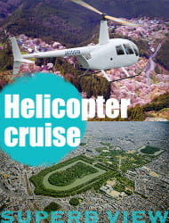 Helicopter Tours: Explore the City from Your Seat in the Sky