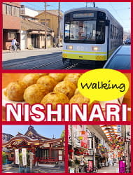 Ride the local lines! Nishinari Tour