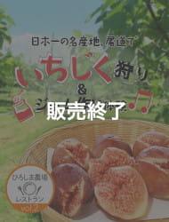 ひろしま農場レストラン vol.2 尾道向島 海辺のいちじく狩り体験