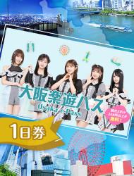 参观大阪观光景点   『大阪乐游券』一日券