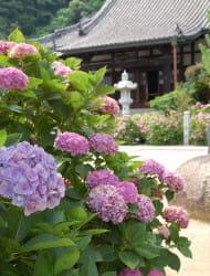 Jiko Temple