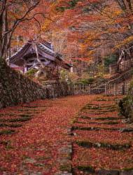釈迦山 百済寺