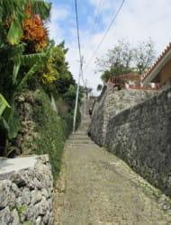 Shuri Kinjo Town Cobblestone Road