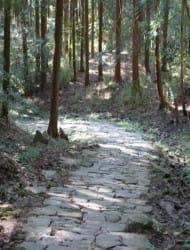 Iwamura Castle Ruins