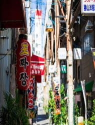Miyuki-dori Shopping Street (Koreatown)