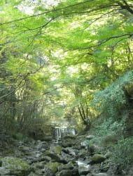 Inunaki Mountain