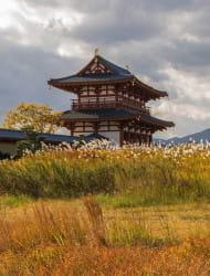 Suzakumon Gate